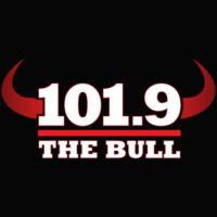 The Bull Logo